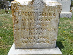 Evelyn Selina Collins