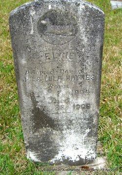 Elcie Haynes
