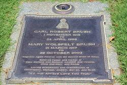 Carl Robert Brush