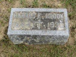 Hannah Elizabeth <i>Ingledew</i> Brook