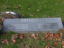 David Robinson Gaitskill