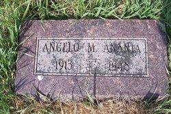 Angelo M Anania