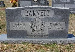 Marie S <i>Sims</i> Barnett