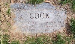 Anna M. Cook