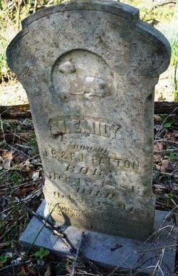 M. Emily Patton