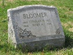 Mary Ann Polly <i>Hickman</i> Bloomer