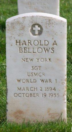 Harold A Bellows
