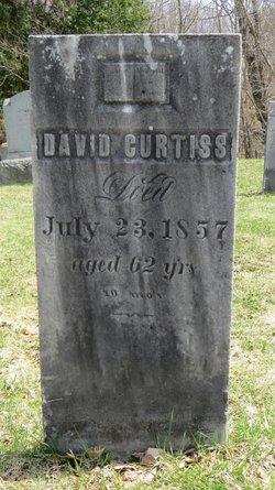 David Curtiss