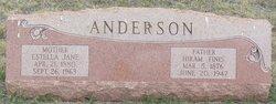 Estella Jane <i>Johnson</i> Anderson