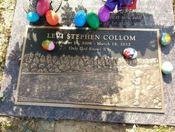 Levi Stephen Collom