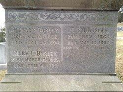 Mary Elizabeth <i>Freeland</i> Bosley