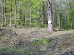 Donwood Cemetery