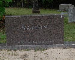 Nancy Lu <i>McMillan</i> Watson