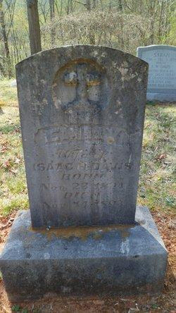 Elizabeth Emily <i>Rogers</i> Davis