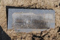 Emily Virginia Shipman