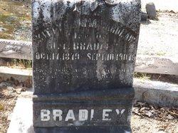 Katrina Alma Kittie <i>Wardlaw</i> Bradley