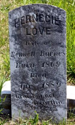 Sallie Pernecie <i>Love</i> Barnes