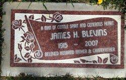 James Harvey Blevins