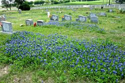 Paradise Garden Cemetery