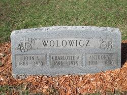 John S Wolowicz
