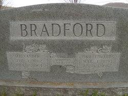 Alexander Bradford