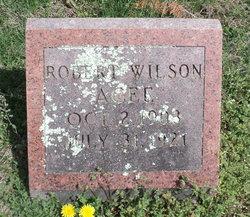 Robert Wilson Agee