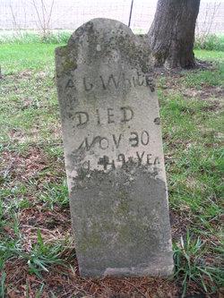Andrew Jackson White