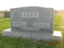Charles F Neff