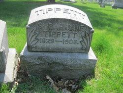 Sarah Jane Tippett