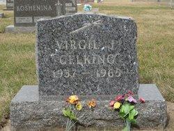 Virgil J Gelking