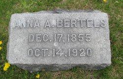 Anna A. Bertels