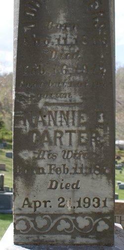Nannie E <i>Carter</i> Ayres