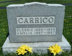 Amelia Carrico