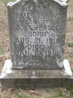 James Lewis Allen