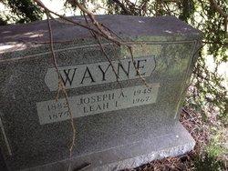 Leah L. Wayne