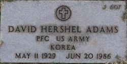 David Hershel Adams