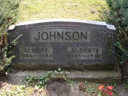 Albert V Johnson