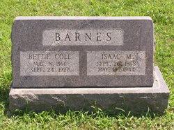 Isaac M. Barnes