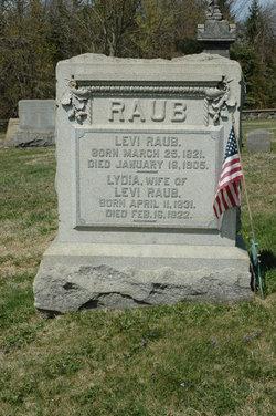 Levi Raub