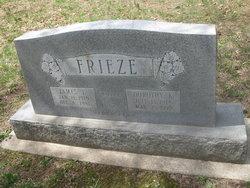 Dorothy K Frieze