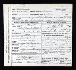 Elizabeth A. <i>Hodgson</i> Abbott