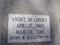Andre Bradford