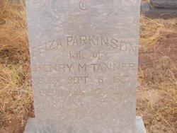 Eliza Ellen <i>Parkinson</i> Tanner
