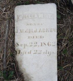William T Abney