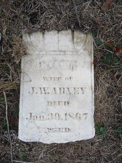 Mary Josephine <i>Webster</i> Abney