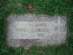 Freida Amelia <i>Fandrey</i> Breese