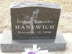 Joshua Timothy Hanewich