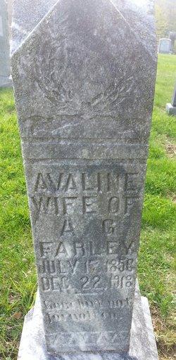 Avaline Farley