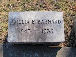 Amelia M C Barnard