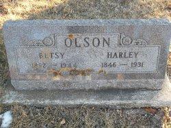 Betsy Ann <i>Peterson</i> Olson